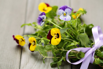 Pansy flower with gift bow