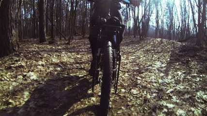Bicycle walk on the wood. POV clip