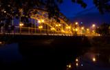 Most Zwierzyniecki - 79719117