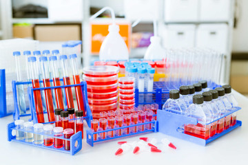 microbiology items on laboratory table
