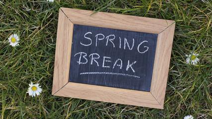 Springbreak written