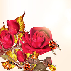 Background with roses and lady birds