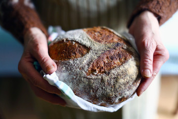 Rustic wholegrain sourdough bread, hands holding fresh loaf