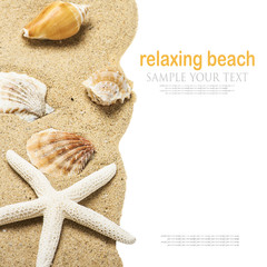 shells on the sea sand