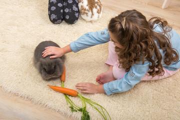 Easter - Little girl loves live rabbit