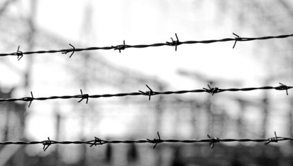 three lines of barbed wire to demarcate the border during the wa