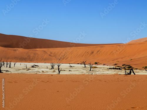 Fotobehang Woestijn desert areas Sossusvlei