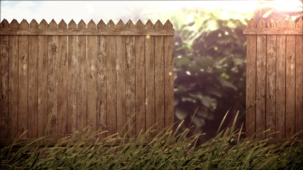 open old wood fence on forest background