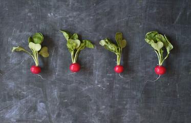 fresh radish, free copy space