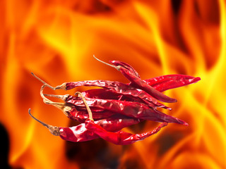 hot and spicy dried chili