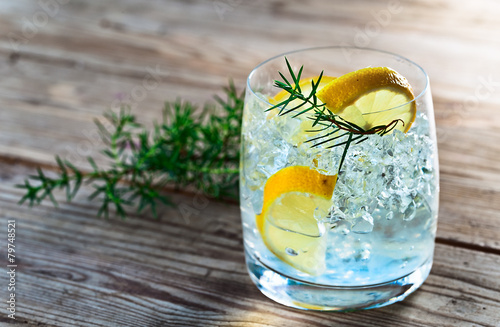 Fotobehang Cocktail Gin with lemon and juniper branch