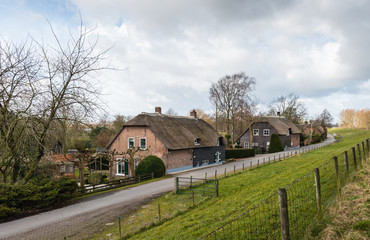 Thatched farm houses along a Dutch dike