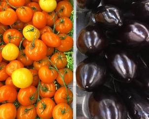 tomates et aubergines