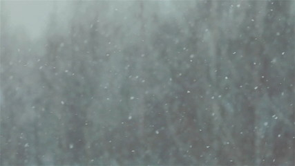 Heavy snow falling. Close up. Blurred background