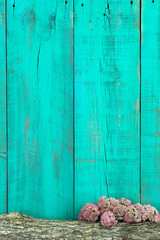 Log and flower border by antique teal blue background