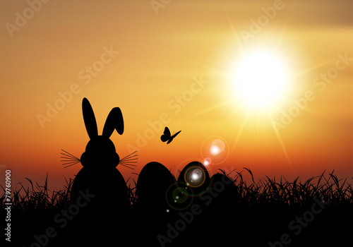 Easter bunny sat in grass against a sunset sky - 79760900