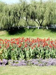 Tashkent Almazar park 2007