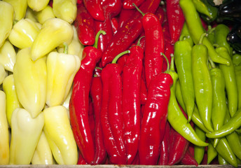 Whitew, red and green colored peppers paprikas