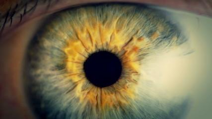 Extreme close up human eye iris in 4K UHD video.