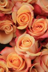 Multicolored wedding roses