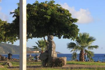 Guadeloupe - Janv 2015 - Basse Terre