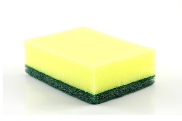 sponge isolated