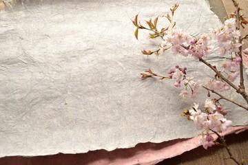 桜の枝とグレーの紙