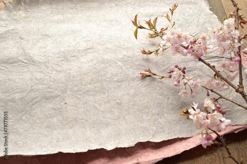 Keuken foto achterwand Kersen 桜の枝とグレーの紙