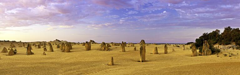 Известняковые окаменелости Западной Австралии