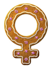 Gingerbread female symbol decorated colored icing
