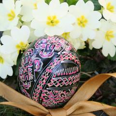 uovo decorato con primule_ Pasqua