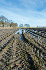 Tractor tracks and puddles in muddy Belgian farmland.