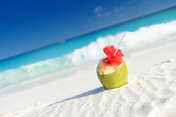 Coconuts with drinking straw on the sand at the sea