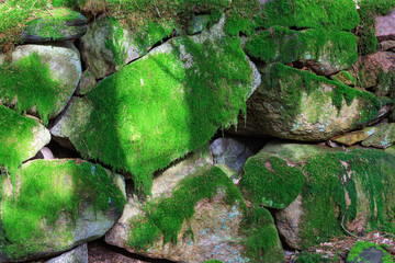 Stone wall coverd with moss