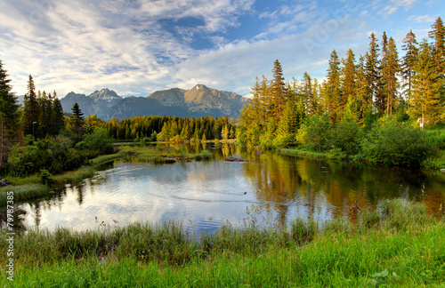 Naturalne górskie jezioro na Słowacji Tatry
