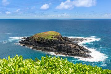 Mokuaeae Island at Kilauea Point, Kauai, Hawaii