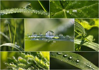 Collage von Tropfen auf Gras