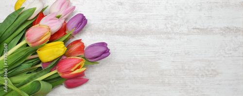Foto op Plexiglas Tulp Hintergrund Tulpen