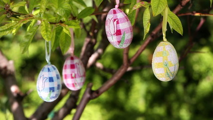 Tree decorated with easter eggs
