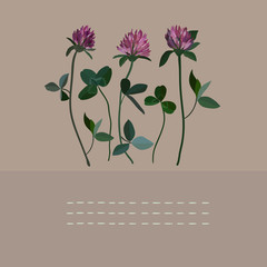 Clover flowers notebook