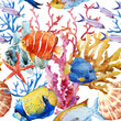 Nice fishes - 79796551