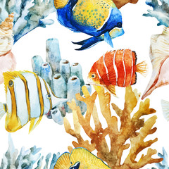 Nice fishes