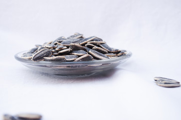 Semi di girasole semi oleosi