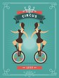 circus dancer poster - 79798356