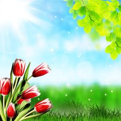 tulipani su sfondo naturale