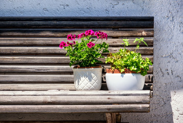 flowers on a bench