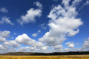 nice sky with clouds