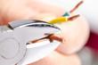Wire cutter - 79806500
