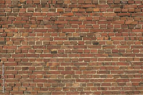 ceglany mur - 79807173