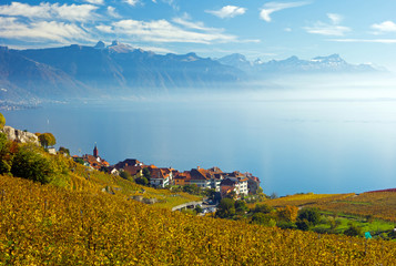 Lavaux, Genfersee